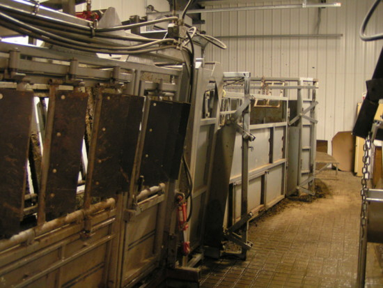 The tub that leads cattle into the chute